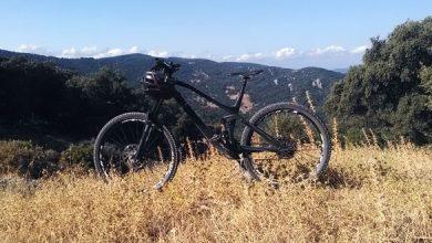 Photo de Parc de Los Alcornocales
