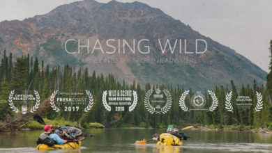 Photo of Chasing Wild